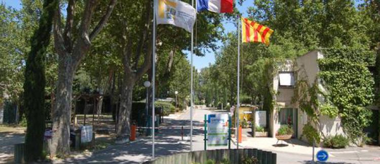 Camping la durance cavaillon luberon monts de vaucluse - Office de tourisme de cavaillon ...